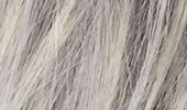 Couleur: SILVER BLOND